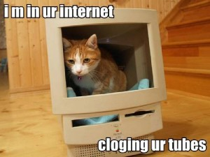 Im in ur internet... clogging ur tubes
